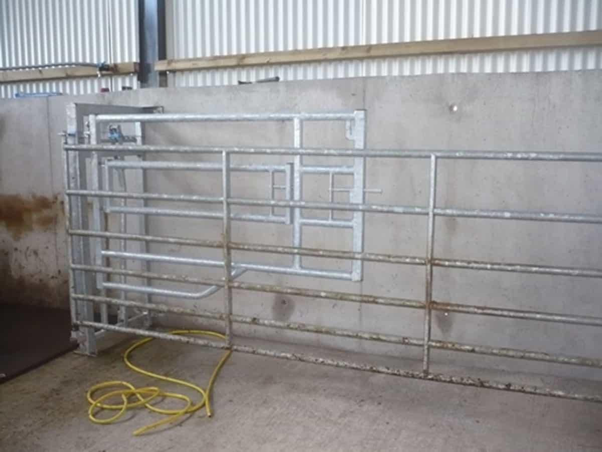 calving gate
