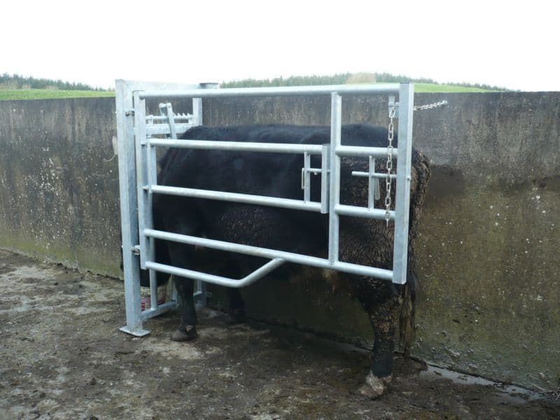 Calving gates roscommon